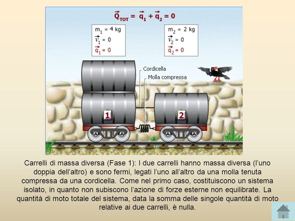 Carrelli di massa diversa (Fase 1): I due carrelli hanno massa diversa (l'uno doppia dell'altro) e sono fermi, legati l'uno all'altro da una molla tenuta compressa da una cordicella.