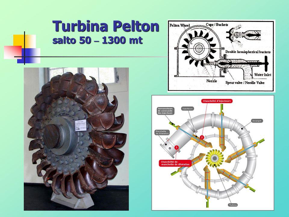 Turbina Pelton salto 50 – 1300 mt