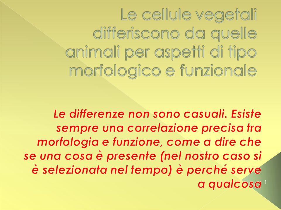 Le cellule vegetali differiscono da quelle animali per aspetti di tipo morfologico e funzionale