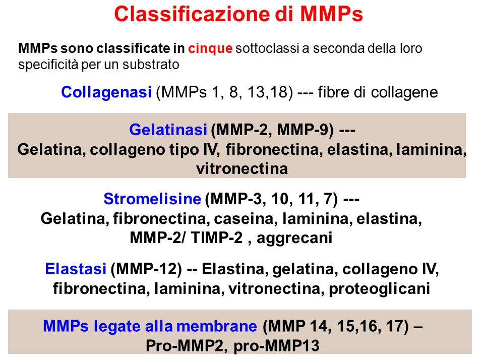 Classificazione di MMPs