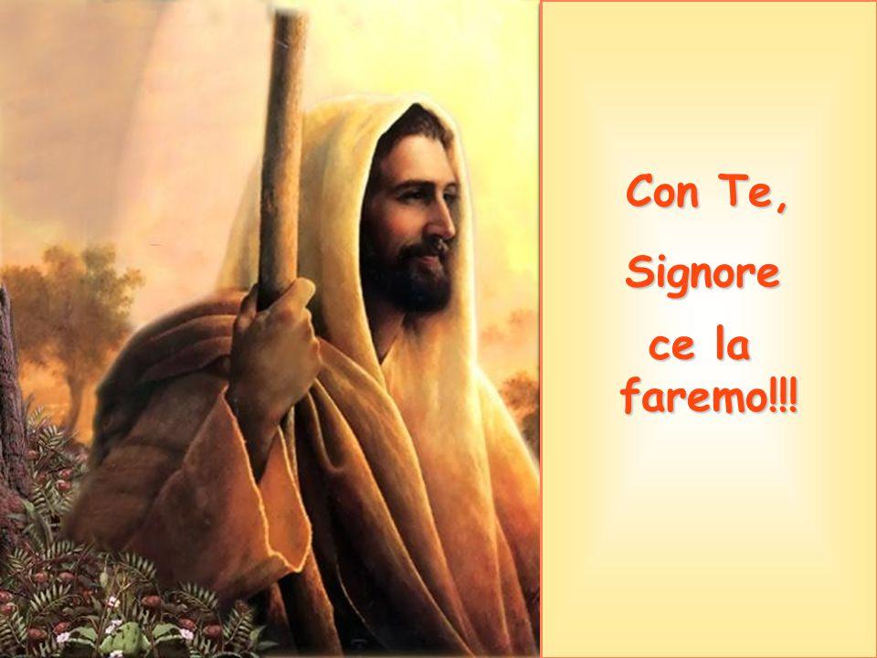 Con Te, Signore ce la faremo!!!