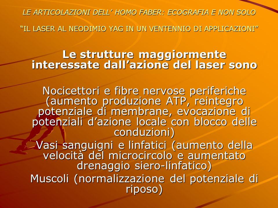 Le strutture maggiormente interessate dall'azione del laser sono