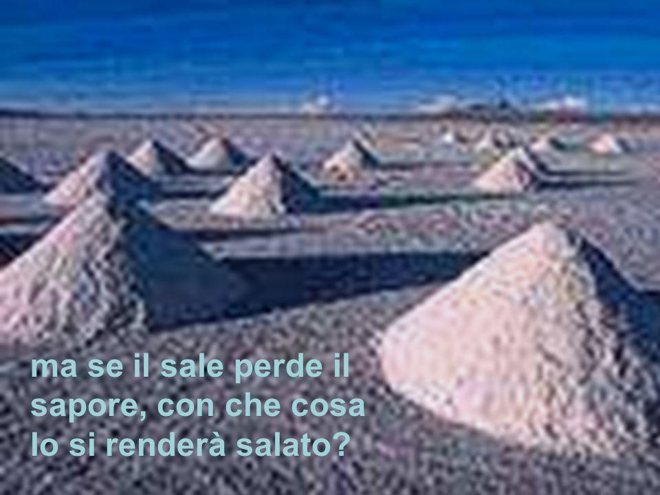 «Voi siete il sale della terra