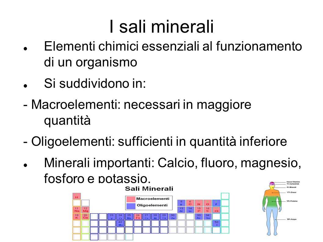 I sali minerali Elementi chimici essenziali al funzionamento di un organismo. Si suddividono in: