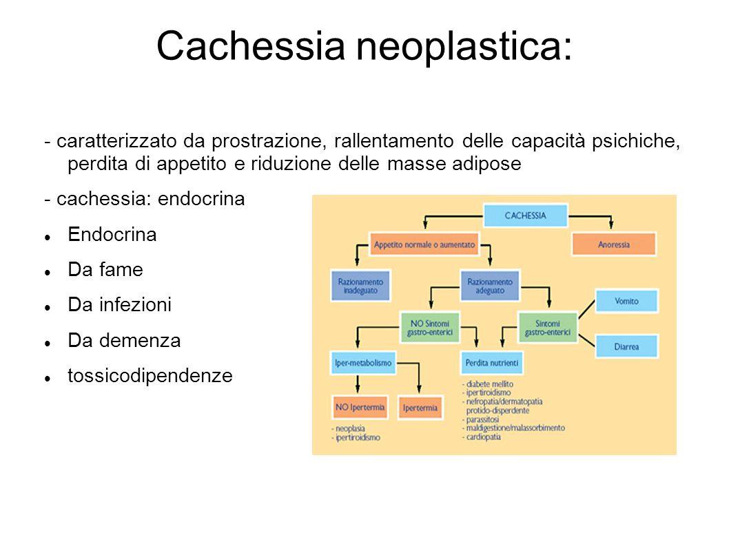 Cachessia neoplastica: