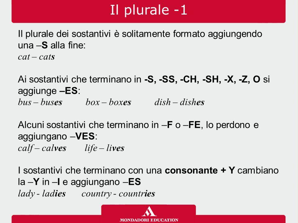 Il plurale -1 Il plurale dei sostantivi è solitamente formato aggiungendo una –S alla fine: cat – cats.