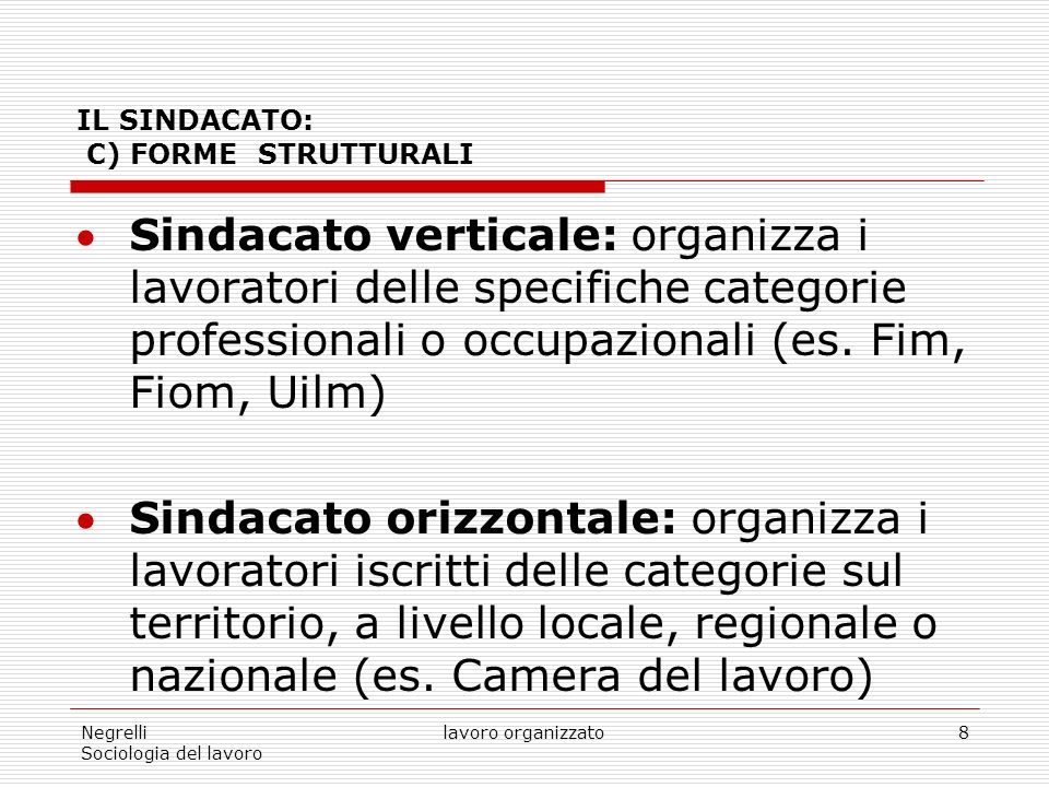 IL SINDACATO: C) FORME STRUTTURALI