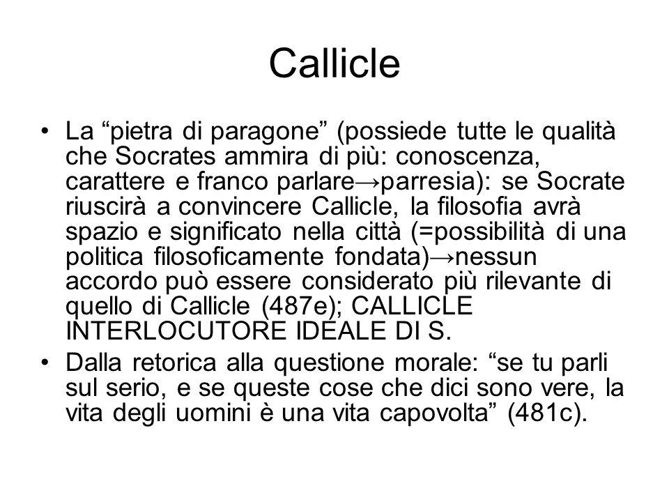 Callicle