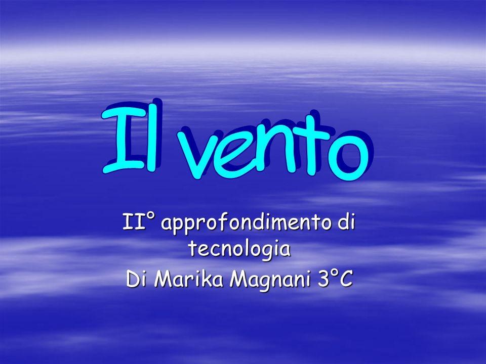 II° approfondimento di tecnologia Di Marika Magnani 3°C