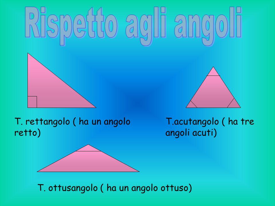 Rispetto agli angoli T. rettangolo ( ha un angolo retto)