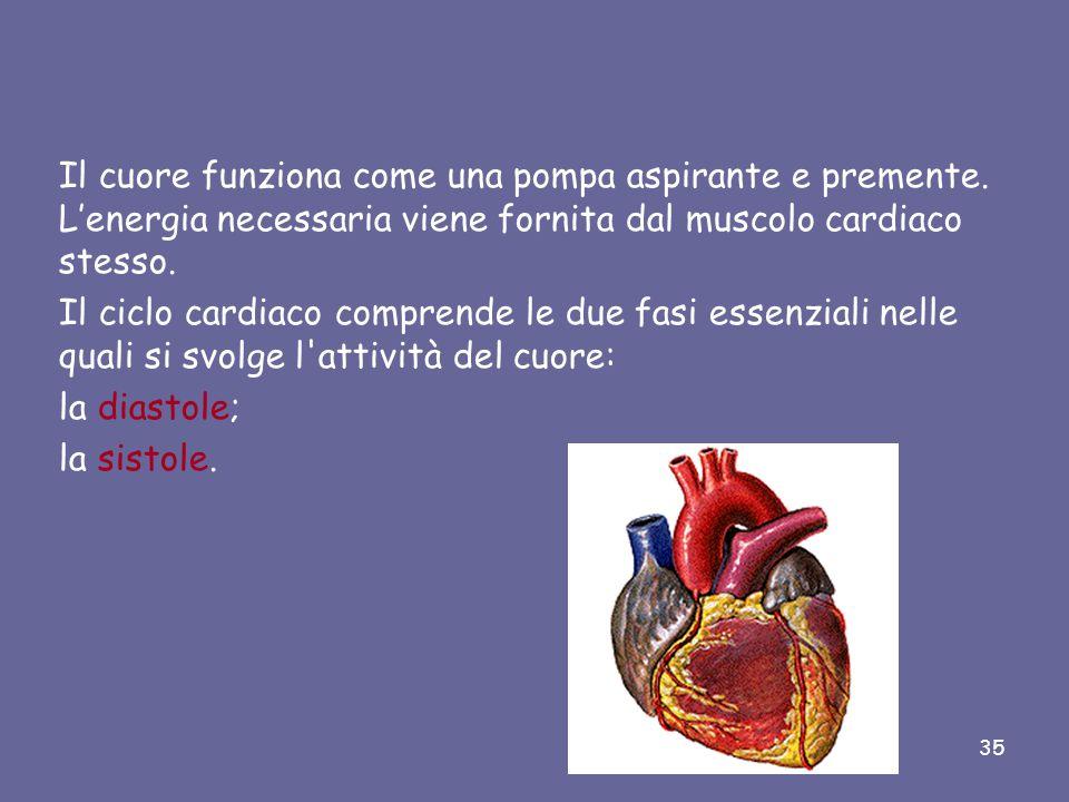 Il cuore funziona come una pompa aspirante e premente