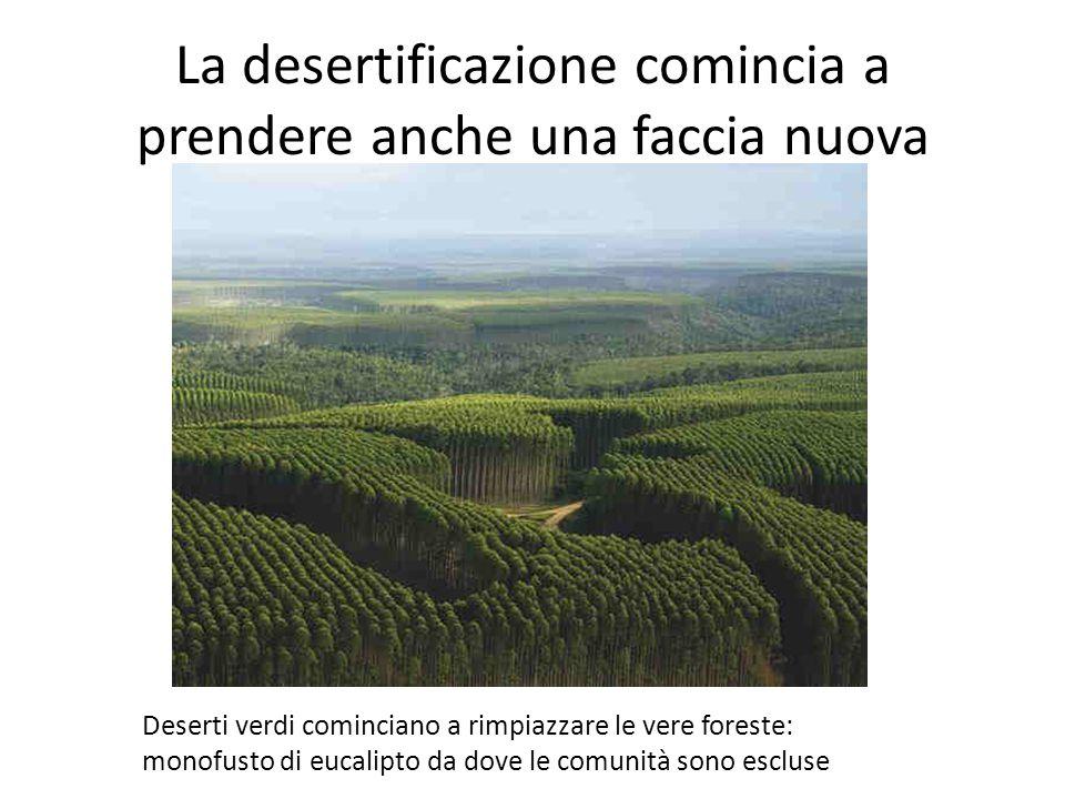 La desertificazione comincia a prendere anche una faccia nuova