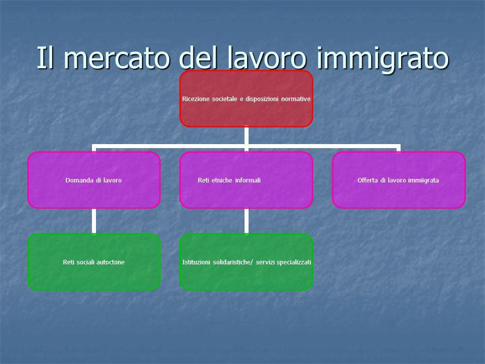 Il mercato del lavoro immigrato