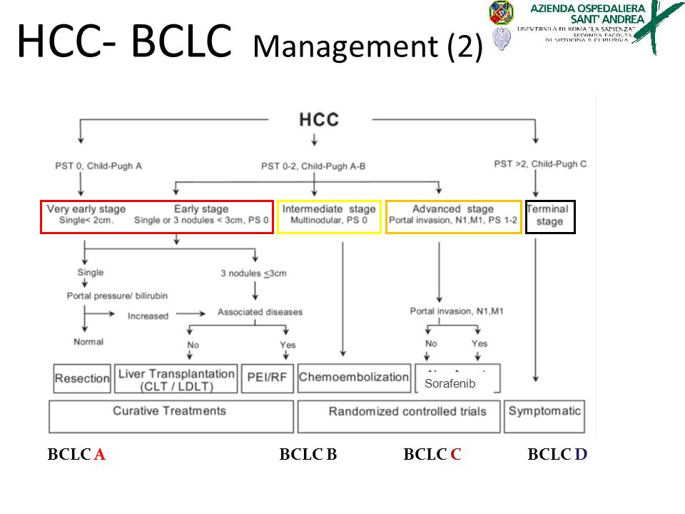 HCC- BCLC Management (2)