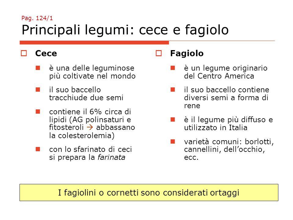 Pag. 124/1 Principali legumi: cece e fagiolo
