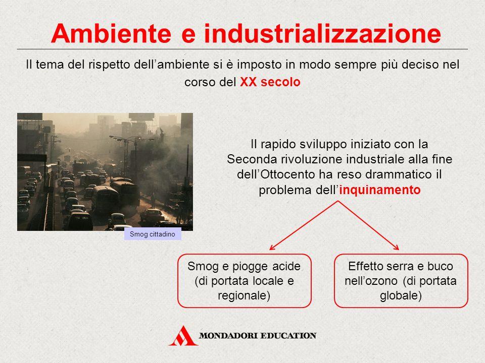 Ambiente e industrializzazione
