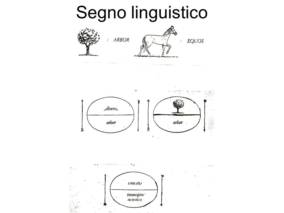 Segno linguistico