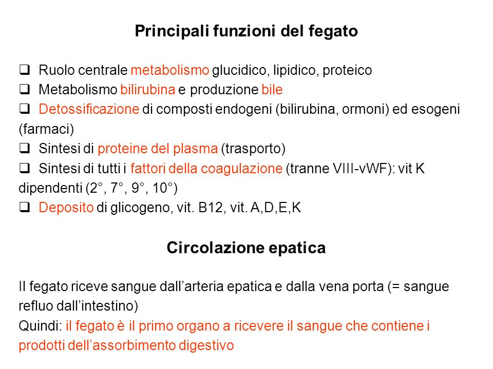 Principali funzioni del fegato