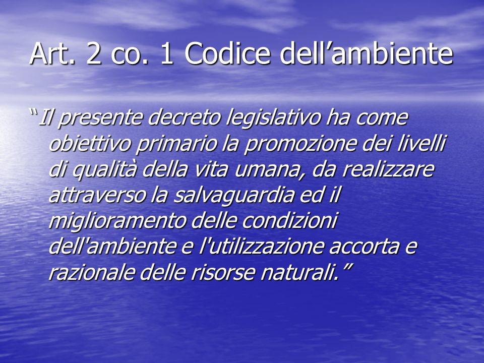Art. 2 co. 1 Codice dell'ambiente
