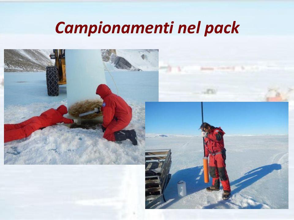 Campionamenti nel pack