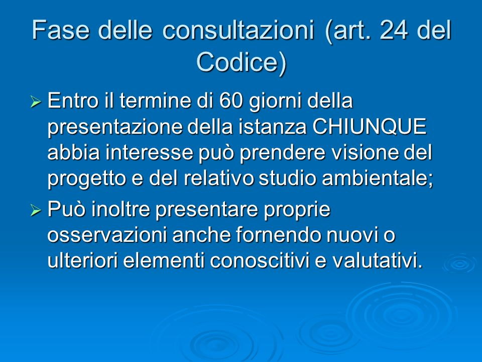 Fase delle consultazioni (art. 24 del Codice)