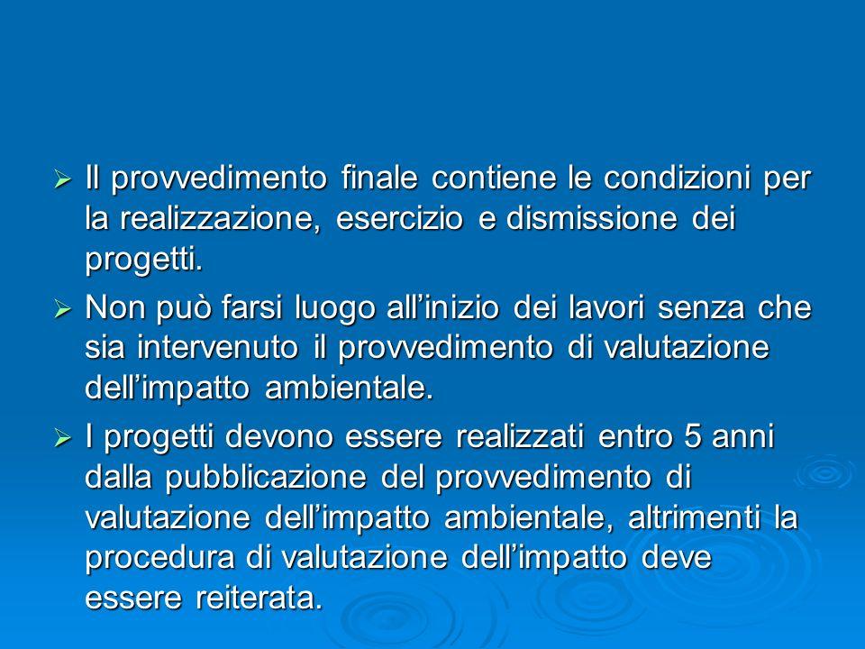 Il provvedimento finale contiene le condizioni per la realizzazione, esercizio e dismissione dei progetti.