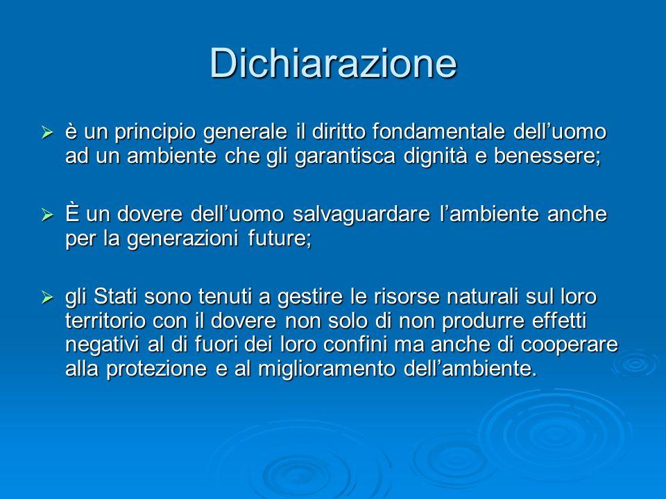 Dichiarazione è un principio generale il diritto fondamentale dell'uomo ad un ambiente che gli garantisca dignità e benessere;