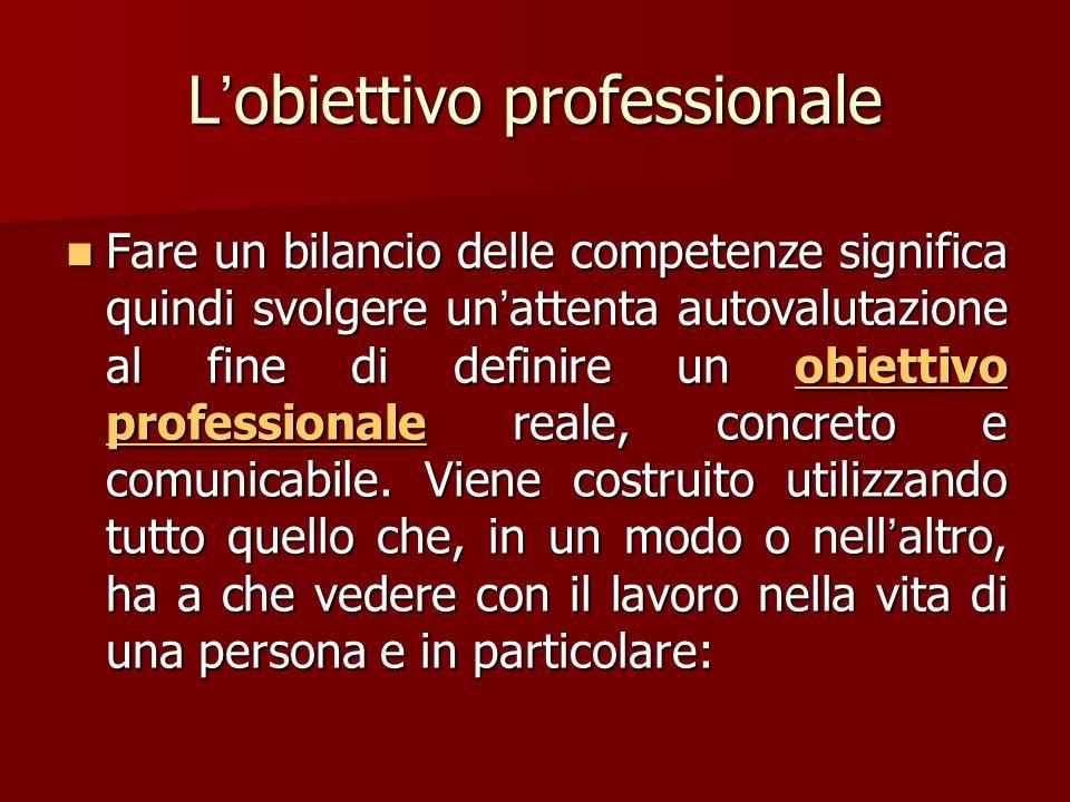 L'obiettivo professionale