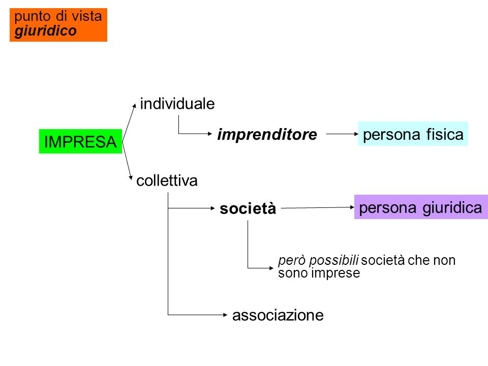individuale imprenditore persona fisica IMPRESA collettiva società