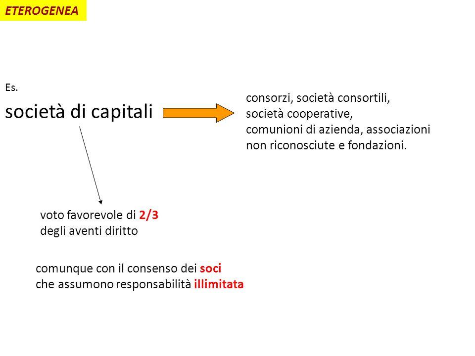 società di capitali ETEROGENEA