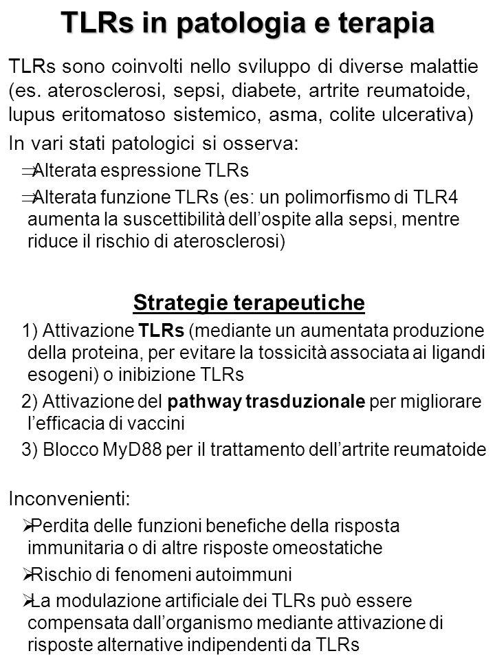 TLRs in patologia e terapia