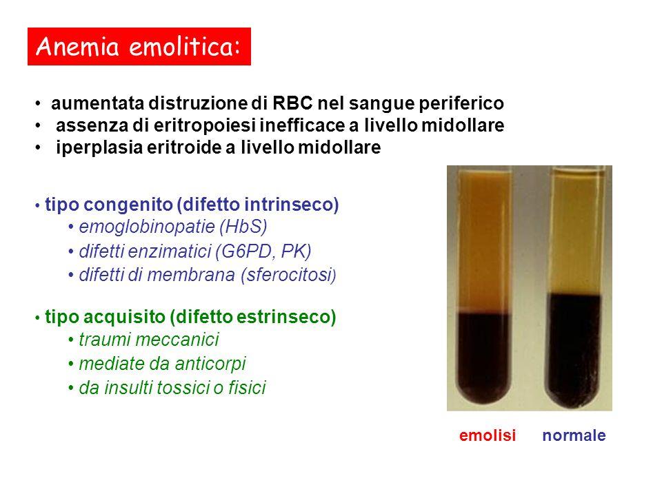 Anemia emolitica: aumentata distruzione di RBC nel sangue periferico