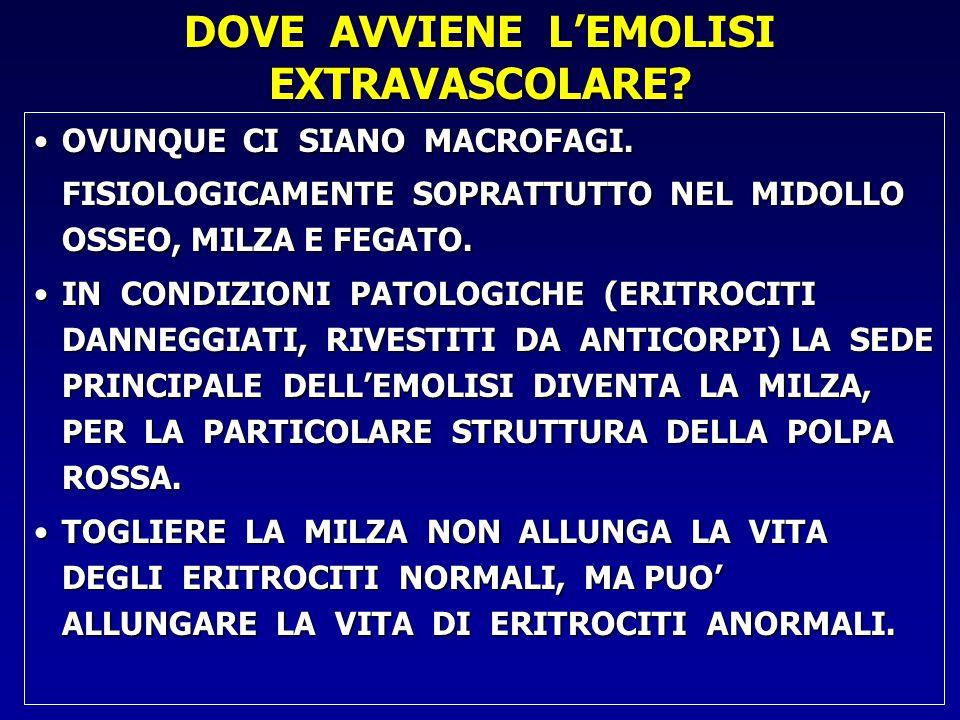 DOVE AVVIENE L'EMOLISI EXTRAVASCOLARE