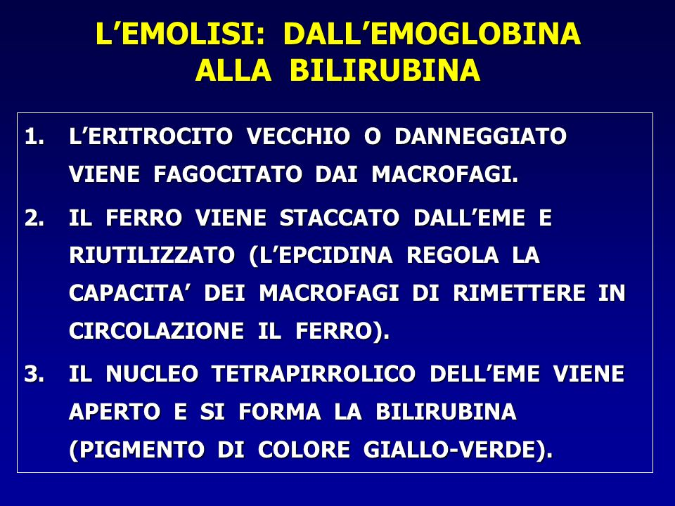 L'EMOLISI: DALL'EMOGLOBINA ALLA BILIRUBINA