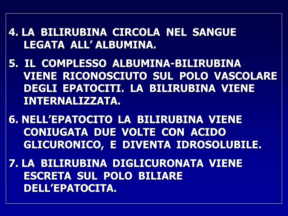 4. LA BILIRUBINA CIRCOLA NEL SANGUE LEGATA ALL' ALBUMINA.
