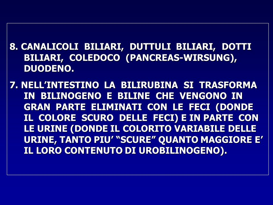 8. CANALICOLI BILIARI, DUTTULI BILIARI, DOTTI BILIARI, COLEDOCO (PANCREAS-WIRSUNG), DUODENO.