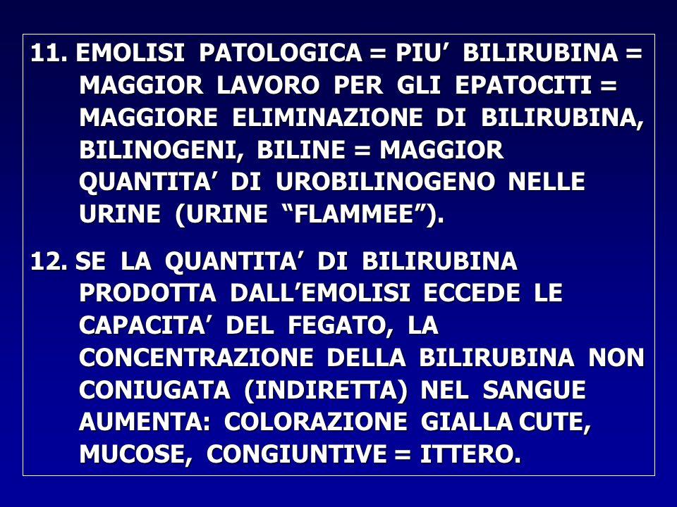 11. EMOLISI PATOLOGICA = PIU' BILIRUBINA = MAGGIOR LAVORO PER GLI EPATOCITI = MAGGIORE ELIMINAZIONE DI BILIRUBINA, BILINOGENI, BILINE = MAGGIOR QUANTITA' DI UROBILINOGENO NELLE URINE (URINE FLAMMEE ).