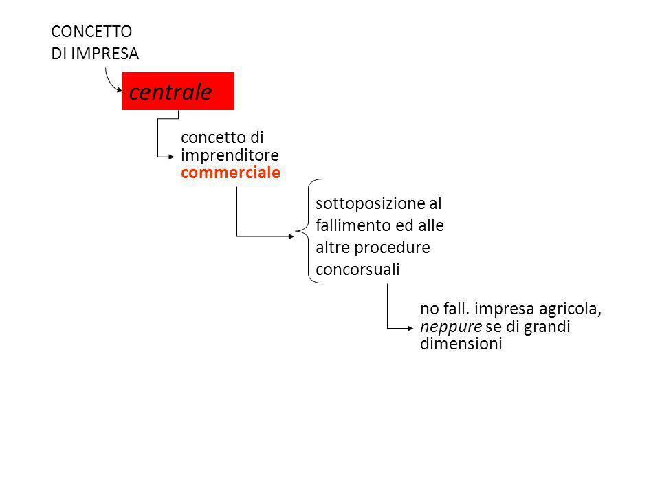 centrale CONCETTO DI IMPRESA concetto di imprenditore commerciale