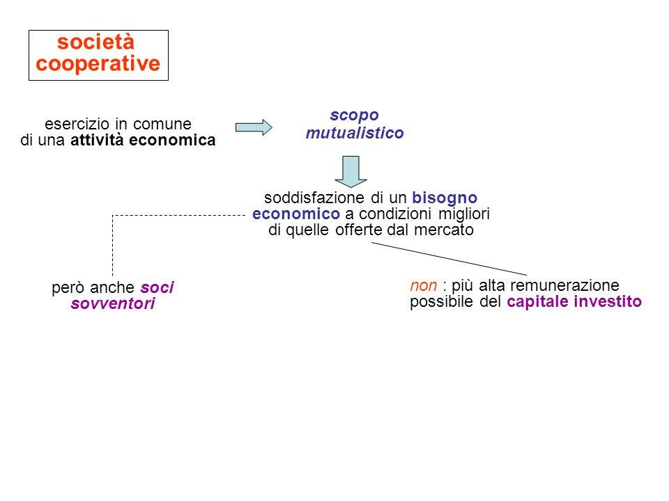 società cooperative scopo mutualistico