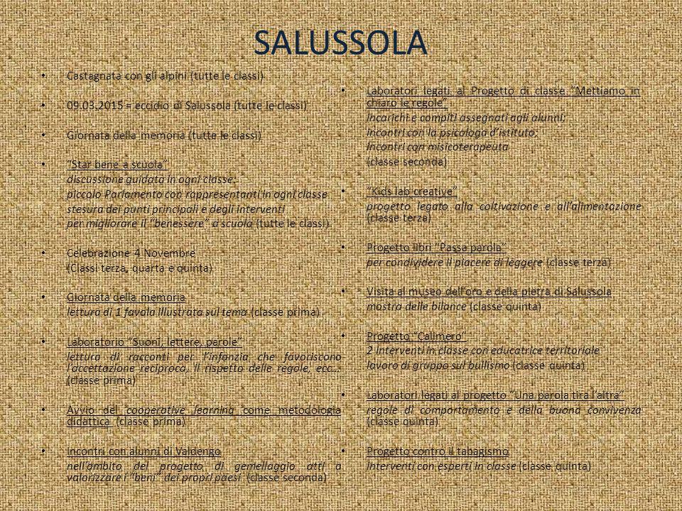 SALUSSOLA Castagnata con gli alpini (tutte le classi)