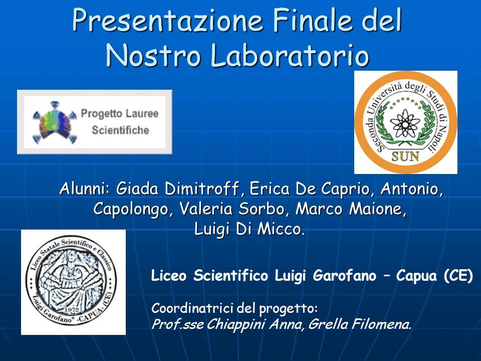 Presentazione Finale del Nostro Laboratorio
