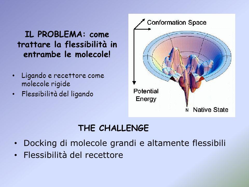 IL PROBLEMA: come trattare la flessibilità in entrambe le molecole!