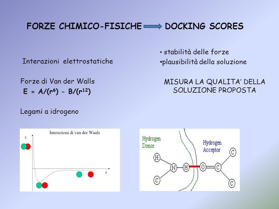 FORZE CHIMICO-FISICHE DOCKING SCORES