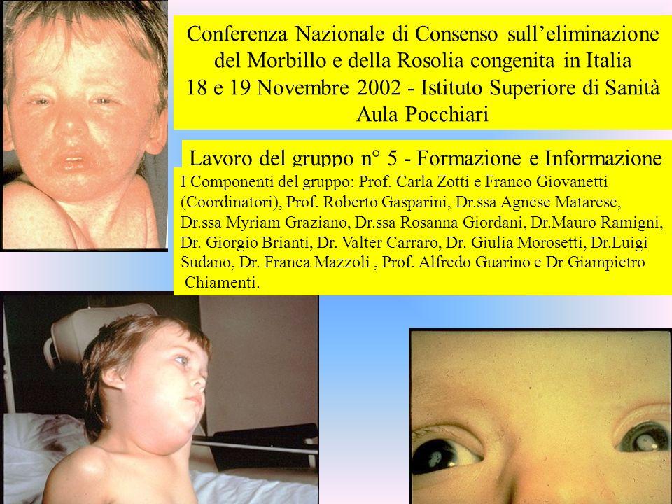 18 e 19 Novembre 2002 - Istituto Superiore di Sanità