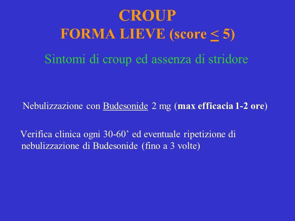 CROUP FORMA LIEVE (score < 5)