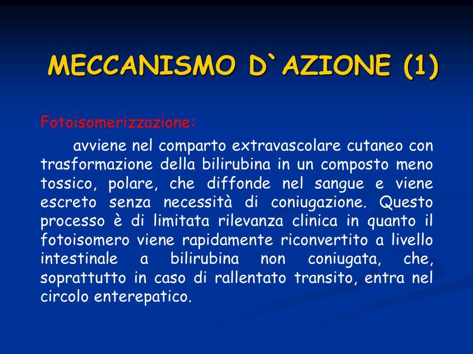 MECCANISMO D`AZIONE (1)