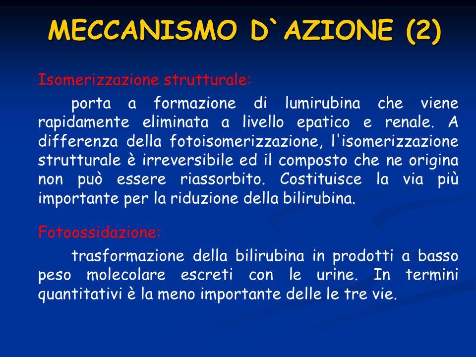 MECCANISMO D`AZIONE (2)