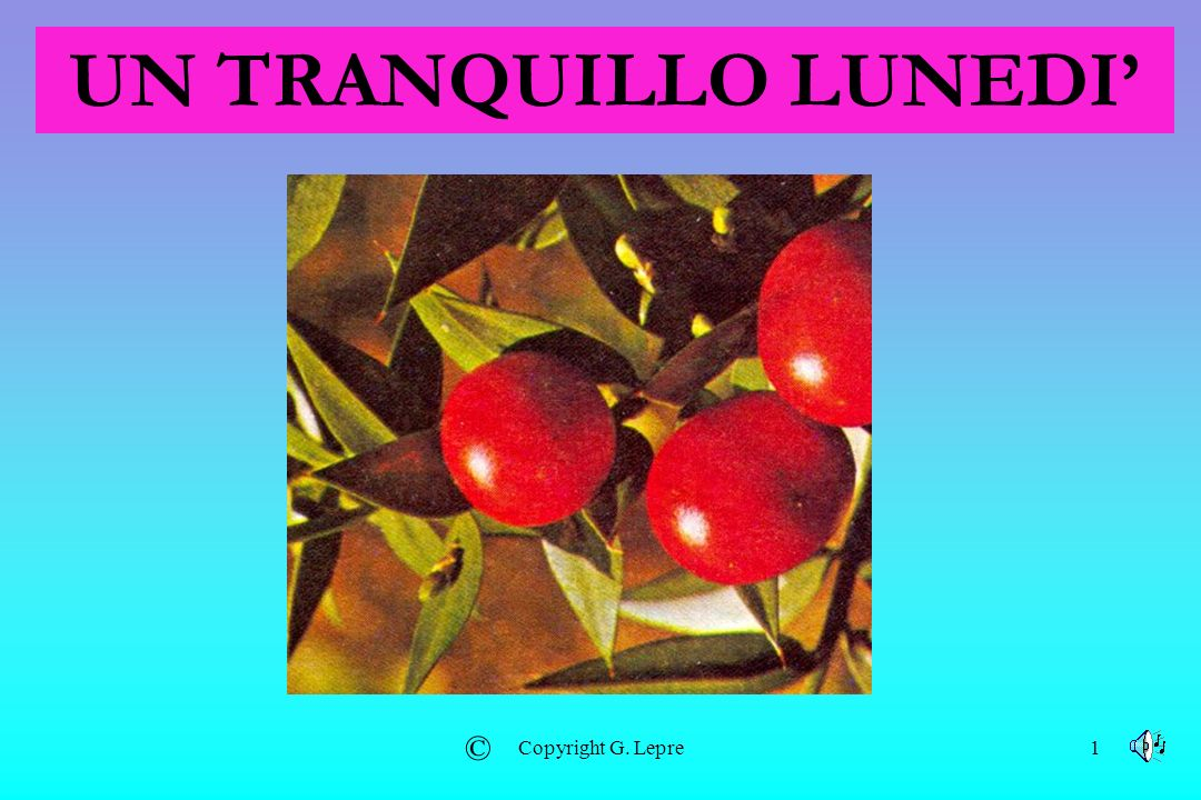 UN TRANQUILLO LUNEDI' © Copyright G. Lepre