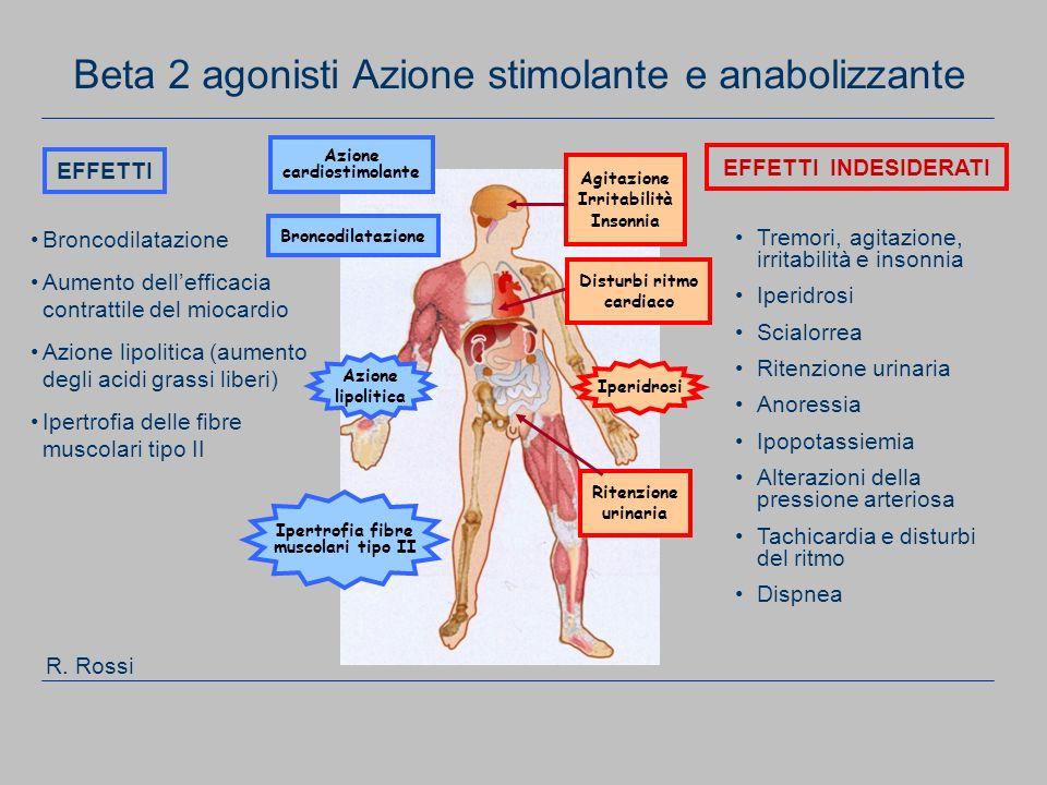 Beta 2 agonisti Azione stimolante e anabolizzante