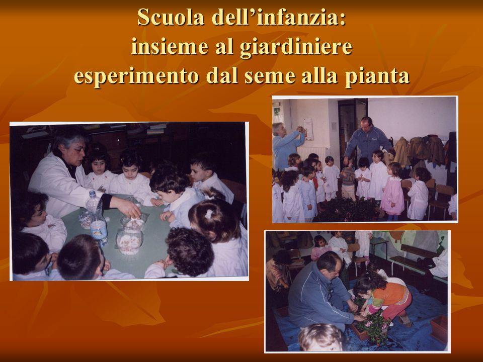 Scuola dell'infanzia: insieme al giardiniere esperimento dal seme alla pianta